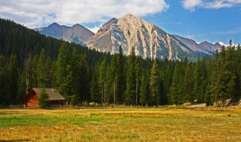 Trappers Cabin Ranch